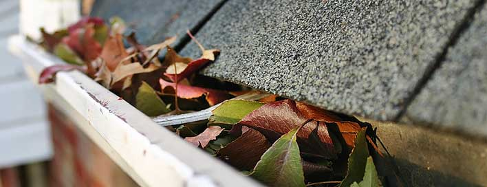 Gutter Cleaning Repair Capital Region NY
